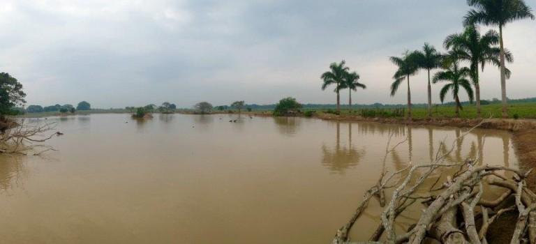 COLOMBIAN SAFARI IN THE RESERVE HATO AURORA